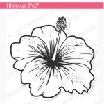 HIBISCUS Small